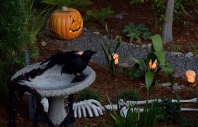 4 Easy Halloween Decorating Tips